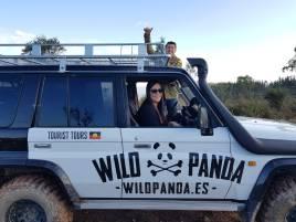 wild panda, arriba y abajo producciones